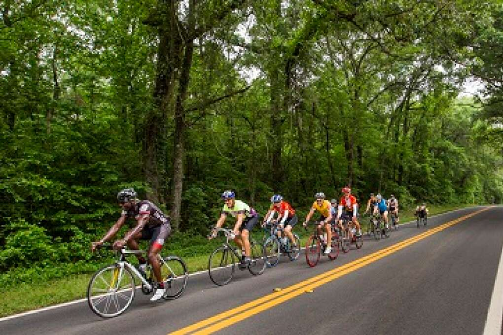Rolling hills and quiet, canopied roads lure cyclists to Madison County Florida from far and wide.