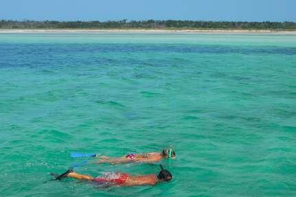 Two people snorkeling in Key West.