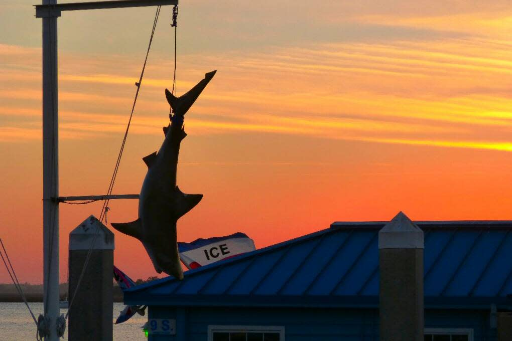 Best Places in Northwest Florida - Fernandina Beach