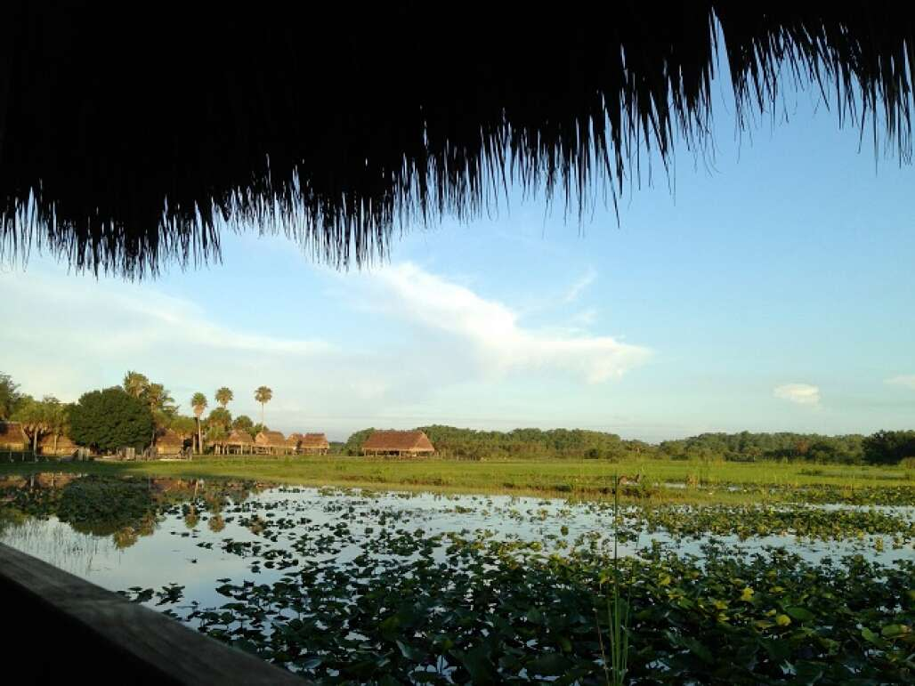 As seen from a rustic chickee hut, the beauty of the Seminole's home is revealed each morning.