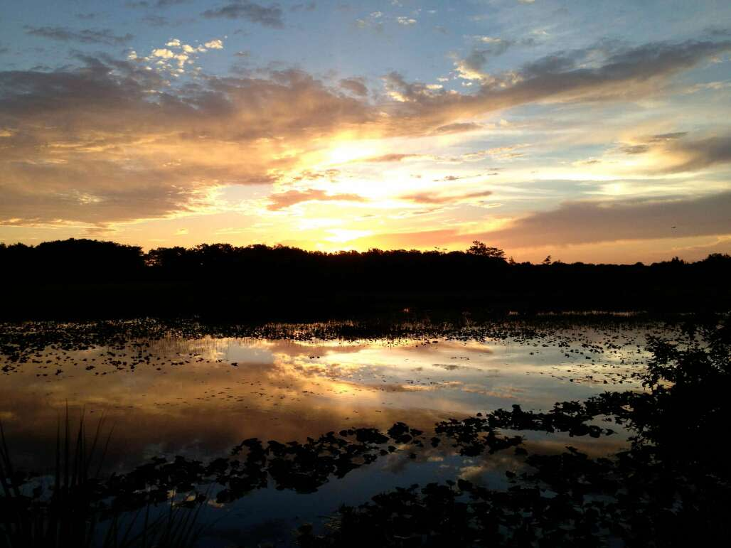 A Seminole sunset from Big Cypress Reservation near Clewiston. When Seminole Indian Noella O'Donnell was born -- and where she returned.