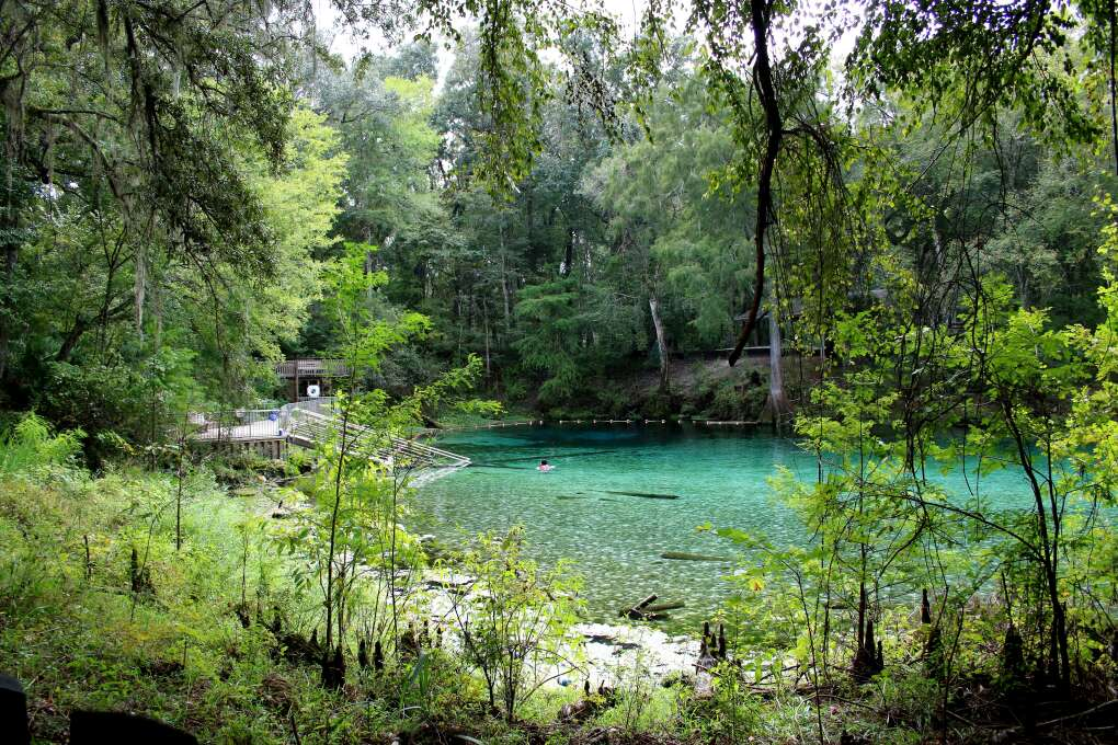 Spring-hoppers enjoy camping  and cabins at Fanning Springs State Park.
