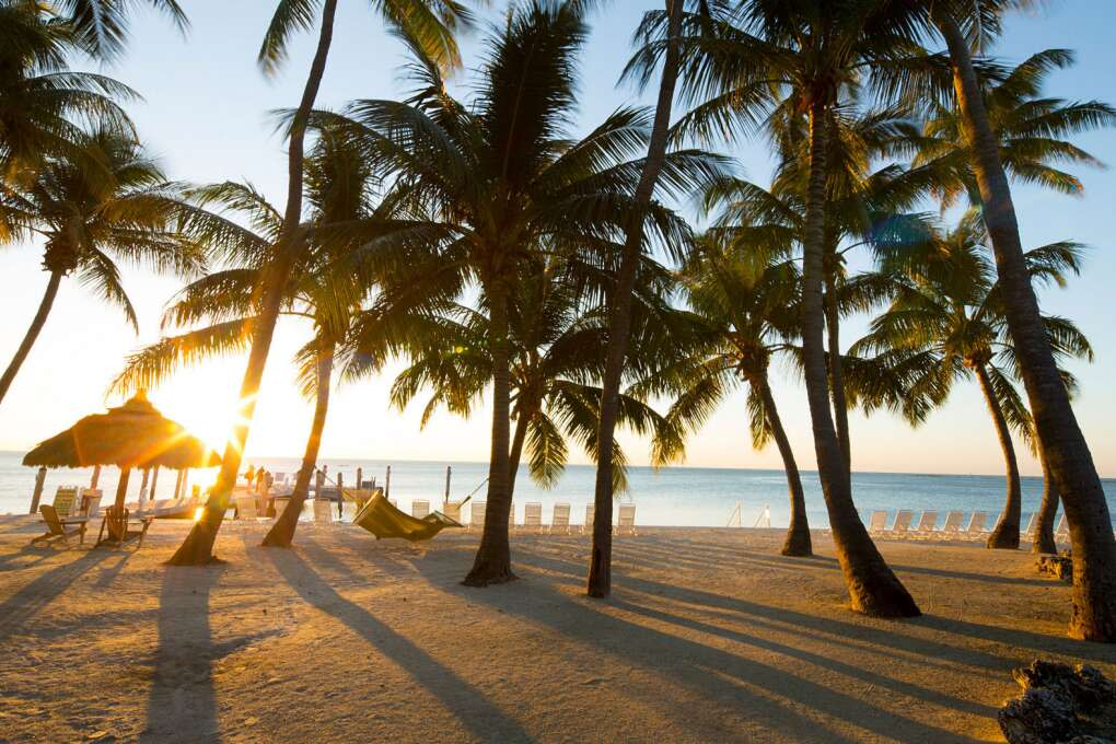 Nestled halfway between Miami and Key West, Amara Cay Resort is a 110-room waterfront boutique hotel in Islamorada.