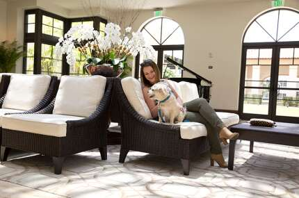 Sit, Stay and Play…..The Alfond Inn located in the heart of Winter Park, Florida welcomes pets.