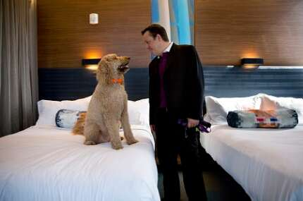 Aloft  Orlando Downtown: state-of-the-art, forward-thinking and pet-friendly.