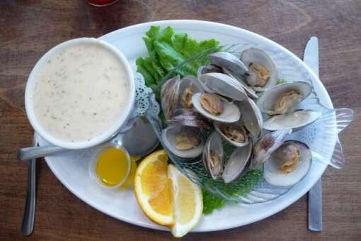 tony's clam chowder  at cedar key