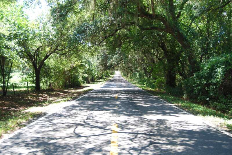 Centerville Road, one of nine canopy roads in Tallahassee