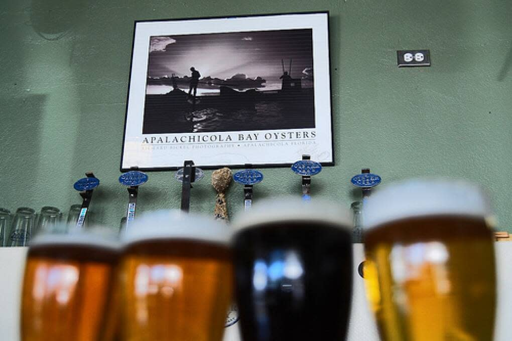 beer samples at Oyster City Brewing