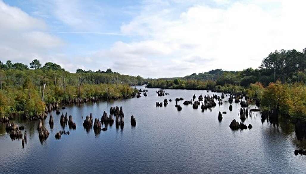 Dead Lakes recreation area