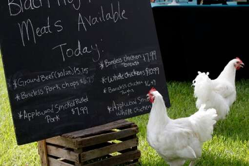 farm to table dining in northeast florida: ymca farmers market in jacksonville