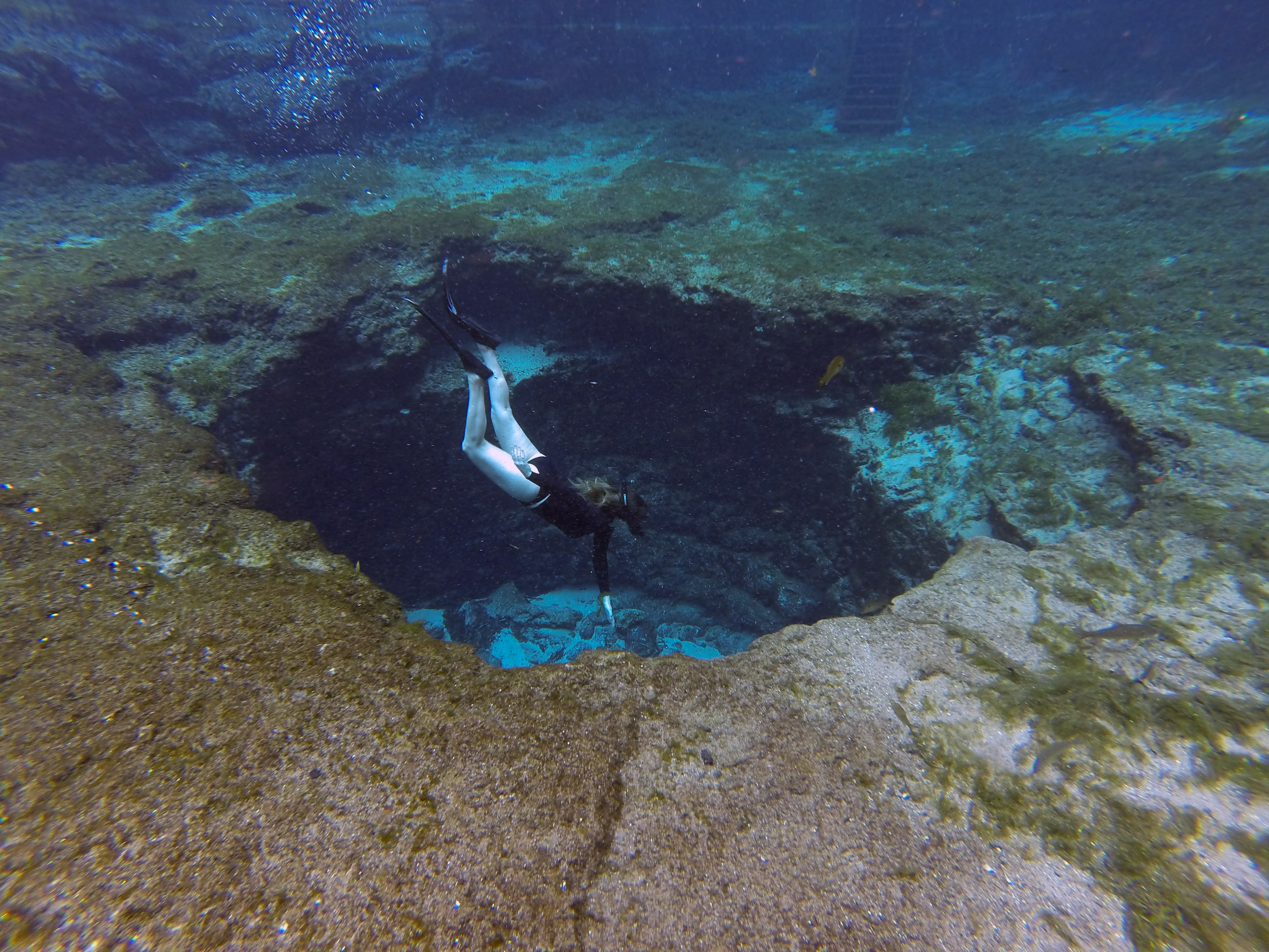 Slip under the surface of one of its seven cool and gin-clear springs, and it's easy to see what makes Ginnie Springs one of the best places to snorkel in Florida.