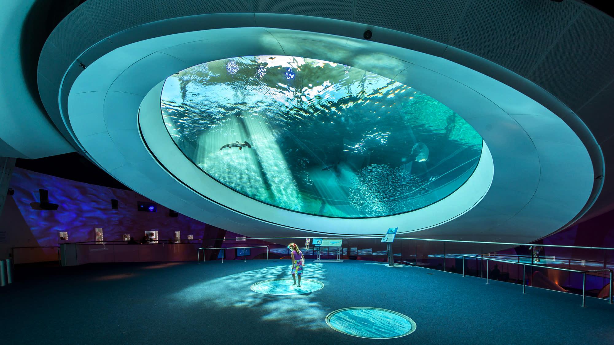 MIAMI_Frost_Science_Museum_Aquarium.jpg
