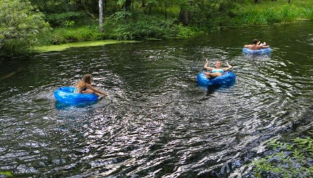 Float down the original lazy river at Ichetucknee Springs State Park.
