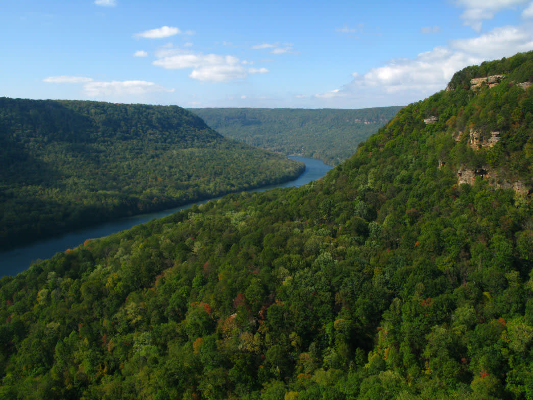 Prentice Cooper State Forest has 35 miles of trails and primitive campsites if you want to spend a night or two.