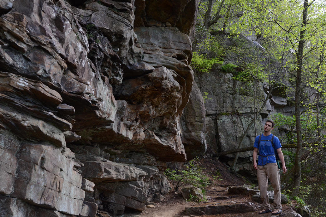 The trail makes hiking easy for families and hikers of all ages and ability.