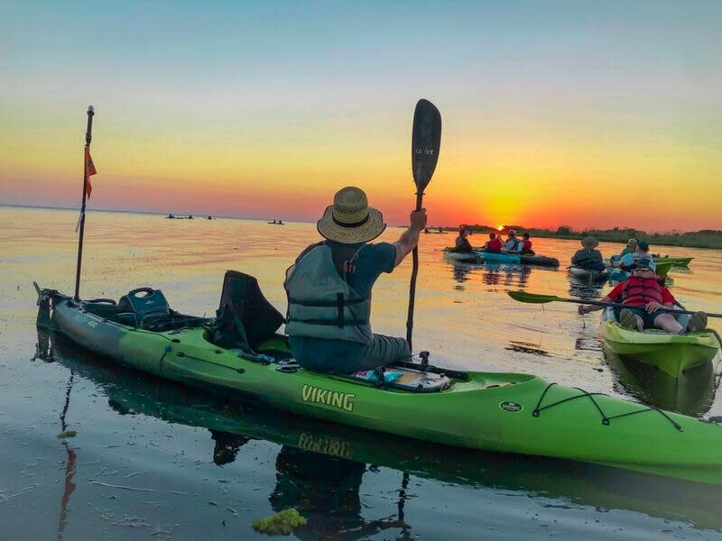 The guided Sunset Paddle excursion with Bayou Adventure is a great introduction to the ecological treasures of the Louisiana Northshore on Lake Pontchartrain.