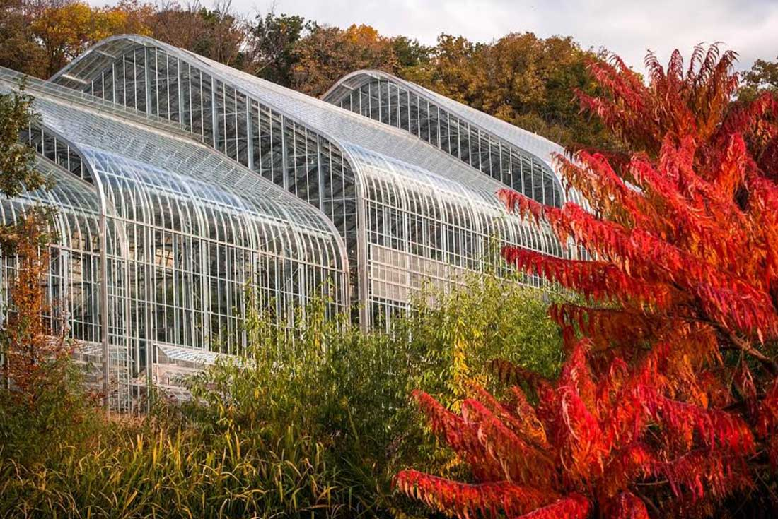 The metal and glass Marjorie K. Daugherty Conservatory in Omaha, Nebraska is surrounded by lush green and red plants