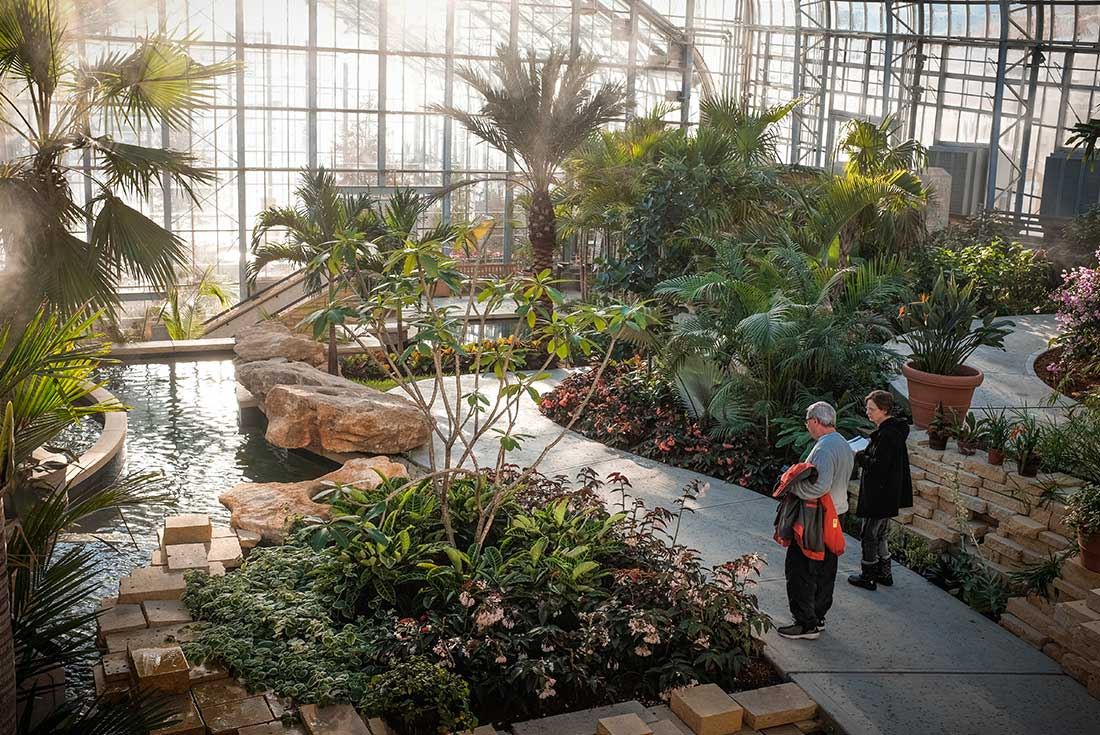 A couple stands by tropical plants and water feature in the Marjorie K. Daugherty Conservatory in Omaha, Nebraska
