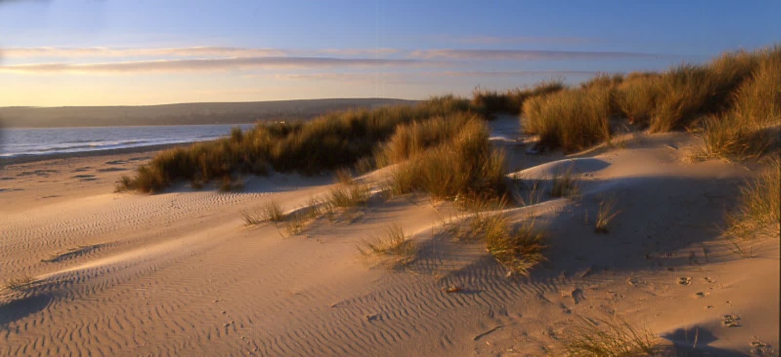 The exotic white sands of Studland Bay