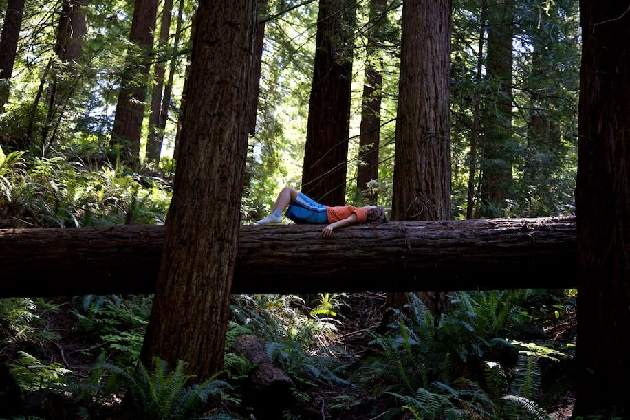A child lies on a log in Portland, Ore.'s Forest Park, which, at 5,200 acres, is one of the country's largest urban parks and a popular escape for runners, equestrians and hikers.