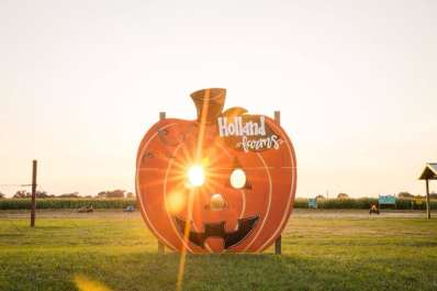 Holland Farms Pumpkin Patch & Maze