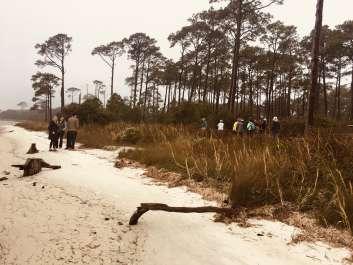 FMW Audubon Field Trip to Soundside Preserve
