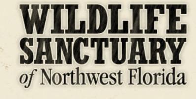 Sunday Supper at Cypress Pensacola Benefiting Wildlife Sanctuary of Northwest Florida