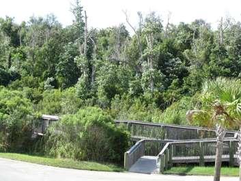 FMW Audubon Birdwalk to Shoreline Park, Gulf Breeze