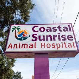 Coastal Sunrise Animal Hospital Adoption Event and Grand Opening