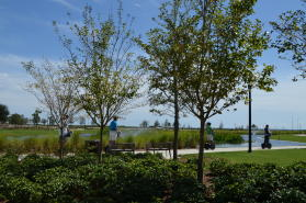 Admiral Mason Park
