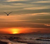 Sunset Cruise ~ Select Fridays and Saturdays