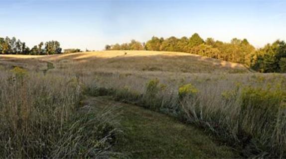 2237_4659_georges mill fields.jpg