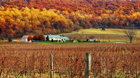44122_4979_Breaux Vineyards test.jpg