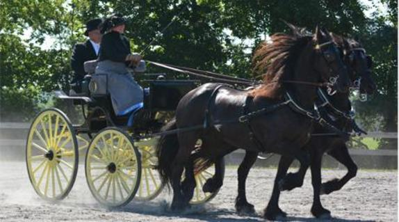 60_4001_carriage show - vl page.jpg