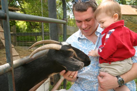 839_304_JG Great Country Farms goat petting web.jpg
