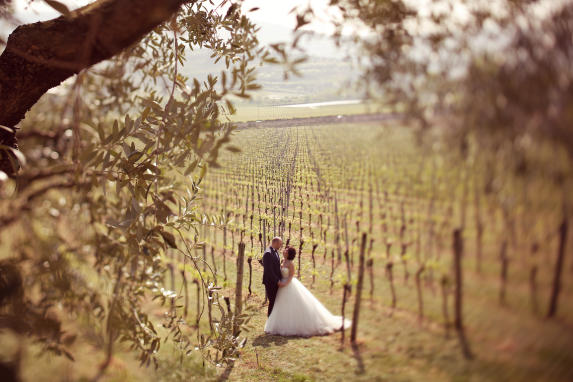 Vineyard - Couple