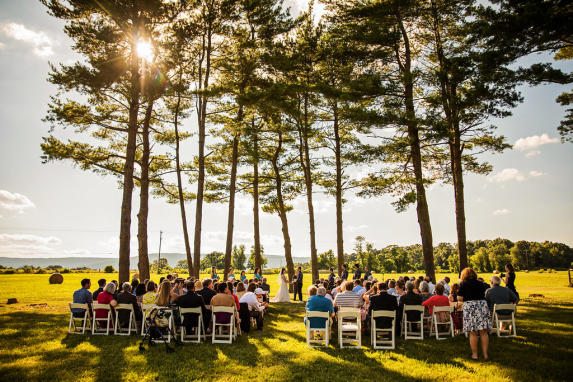 Stephanie and Aaron's Wedding in the Pine Grove