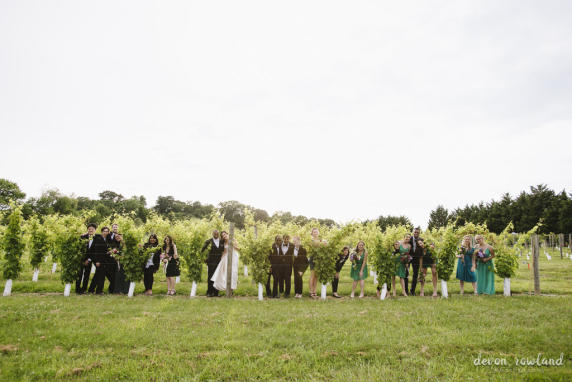 bridal party in the vineyard