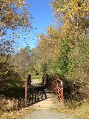 BLES Park Image 2