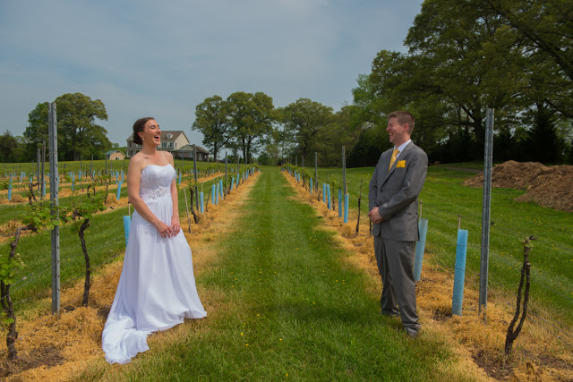 Winery Weddings