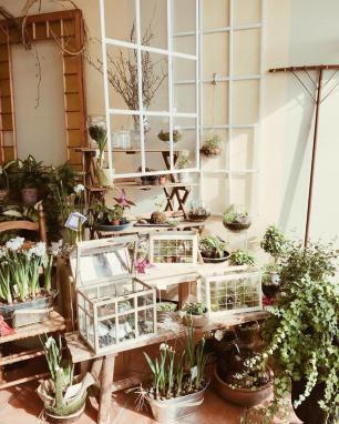 lavender fields florist image 1