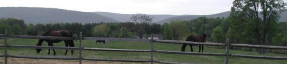 Overlook Farm Image 2