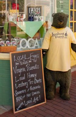 Very Virginia Bear Image