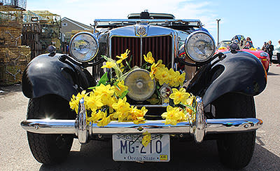 Bellevue Avenue Classic Car Display | Newport, RI | Discover Newport