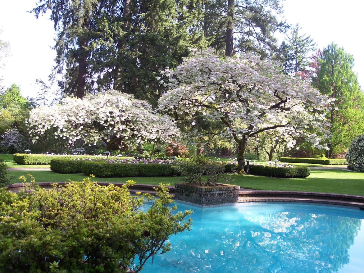 Lakewold Gardens Lakewood Wa 98499