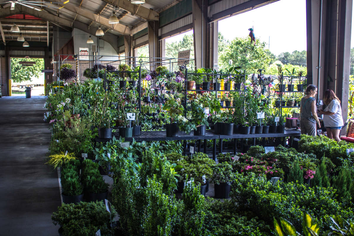 State Farmers Market, Raleigh | Raleigh, NC 27603