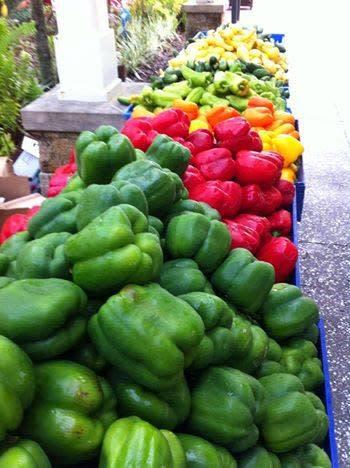 Daytona Beach Downtown Farmers Market Daytona Beach Fl