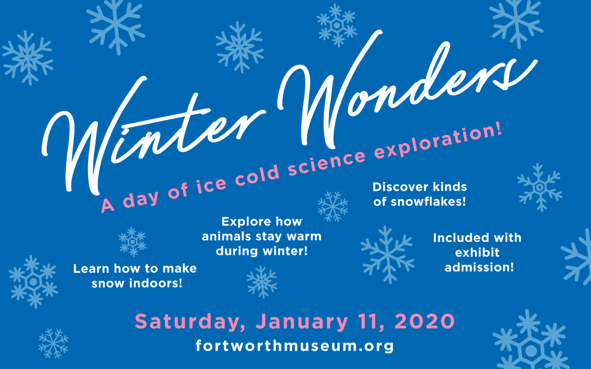 Image result for winter wonders fort worth