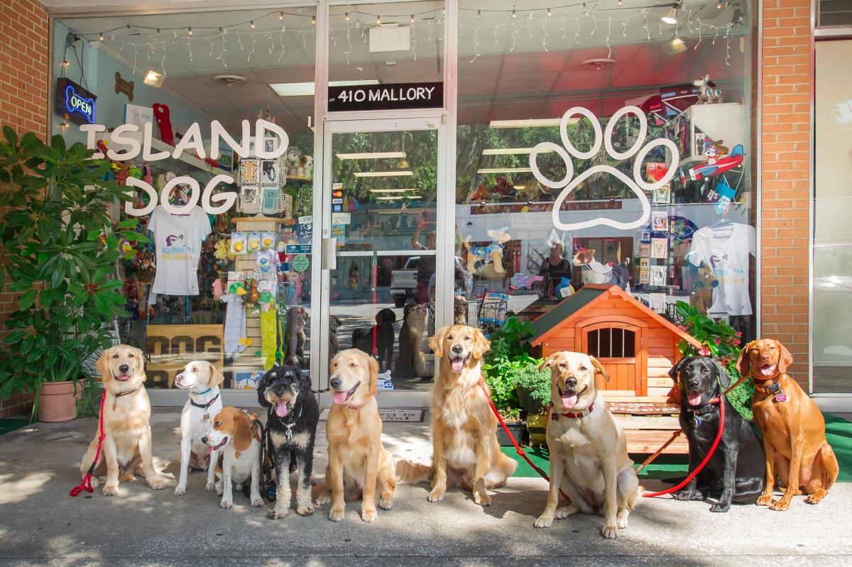 Island Dog   St. Simons Island, GA 31522