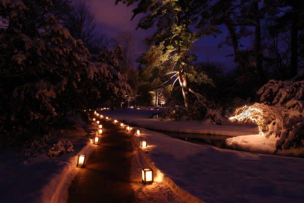 Dow Gardens Christmas Walk 2019 Dow Gardens   Midland, MI 48640